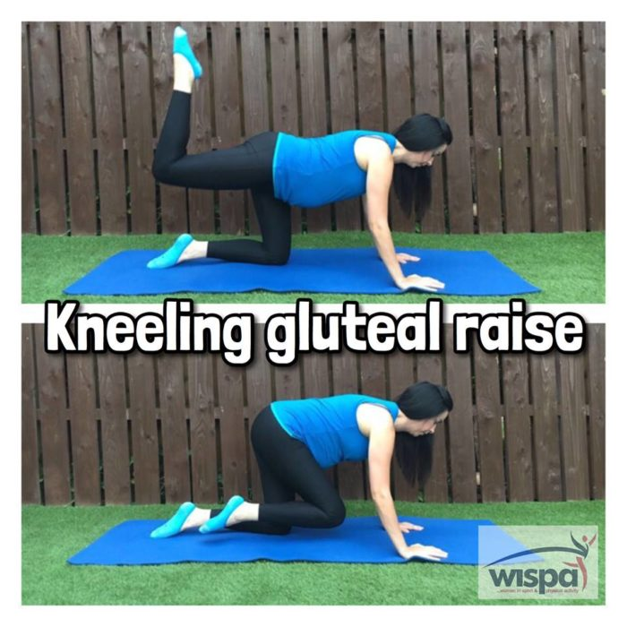 Kneeling Gluteal Raise