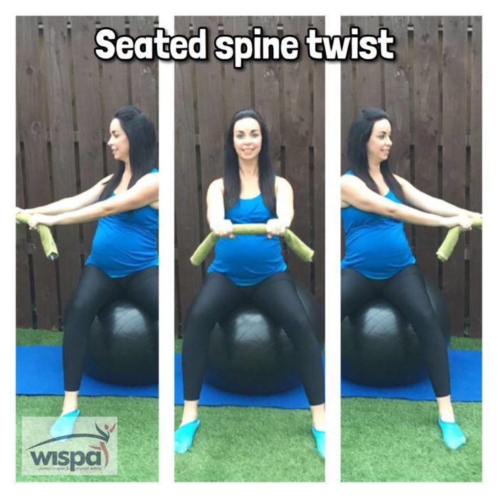 Seated Spine Twist